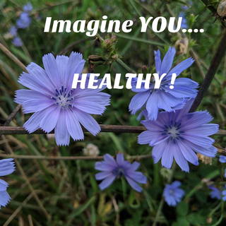 Imagine You...Healthy
