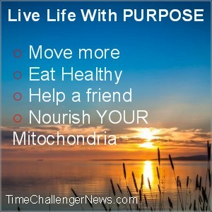 Live Life With Purpose