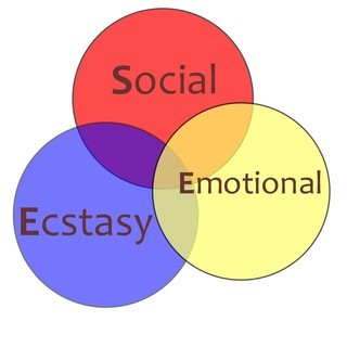 Social-Ecstacy-Emotional Diagram
