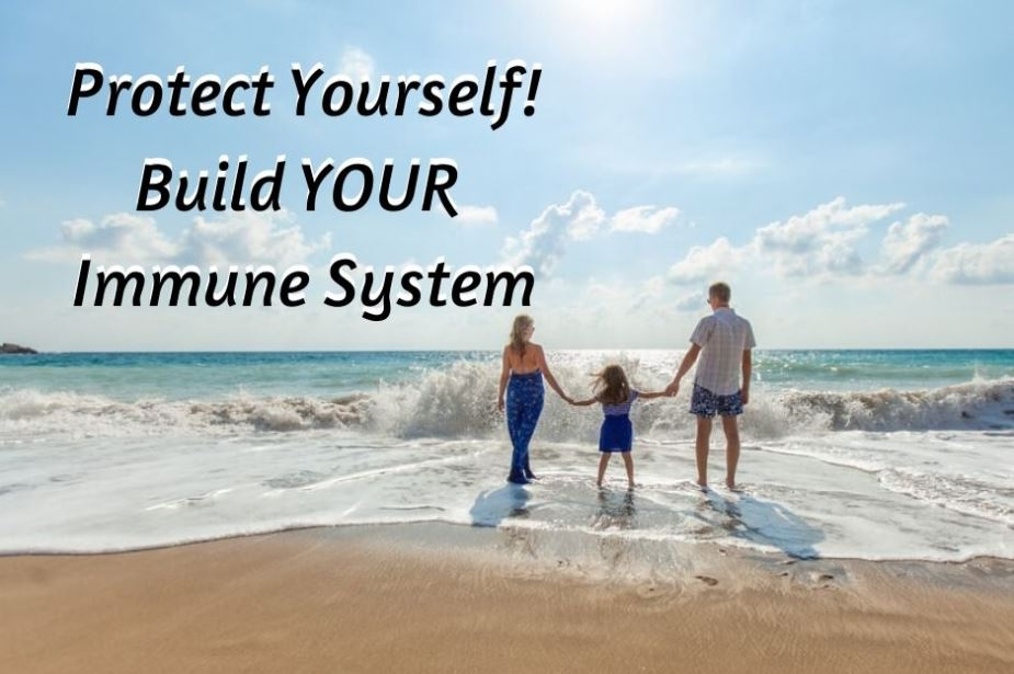 Protect Yourself Build Your Immune System